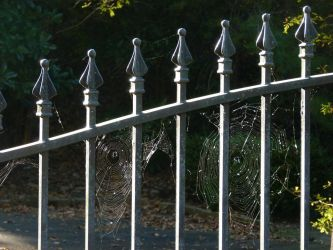 Spiderfence by ecfield