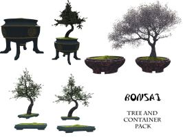 Bonsai tree and container pack by ED-resources