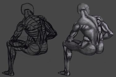 Study of the Back anatomy from Burne Hogarth by lewislong