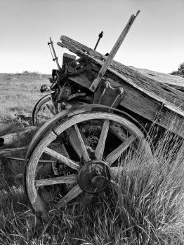 Wagon In Field, Moccasin Montana (BW) by PamplemousseCeil