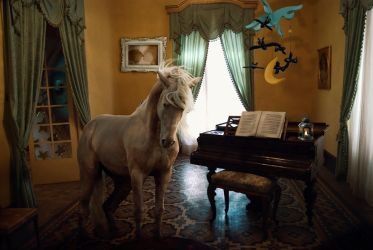 Crazy Animal Composing: Horse by MiaSidewinder