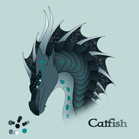 Catfish by xTheDragonRebornx