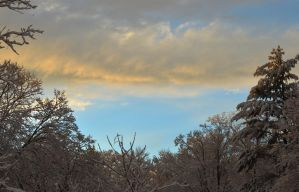Winter Cream Sky by H-R-Germaine