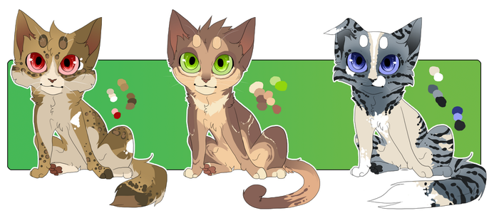 Choose Your Pallet Adopts SOLD by KellzFire