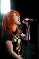 Hayley Williams of Paramore 7 by RyanRadical