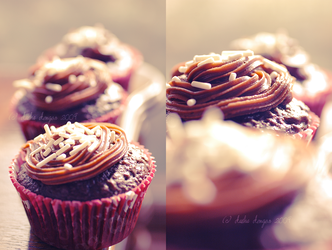 :: CupCakes :: by onixa
