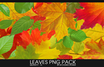 .leaves png pack by btchdirectioner