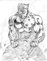Wolverine by CaioMarcus-ART