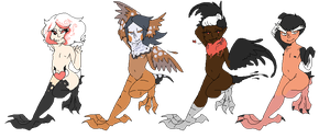 Harpy Adopts #1 (Closed) by IPudding-Adopts