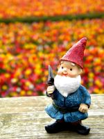 Colored Fields Gnome I by thedustyphoenix