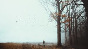 At the End, Silence by RaphaelleM