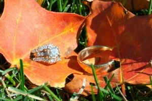 Fall Rings by fotobug8