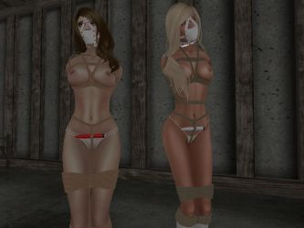 Lingerie models by LuisaErin
