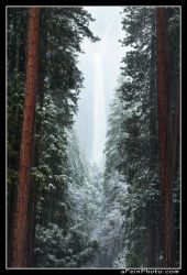 Whispers Of Yosemite by aFeinPhoto-com