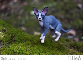 Sphinx doll cat 02 by leo3dmodels
