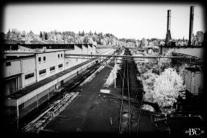Old Oly Brewery Tour I by BCereal