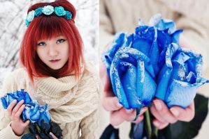 Blue roses by oleggirl