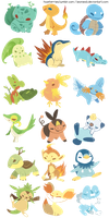 choose your starter by hawberries