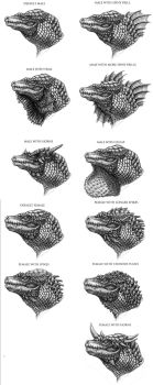 Reptilian Design: Heads by DSil