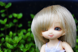 Summer by Cesia