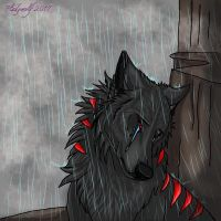 Crying in the rain by pladywolf82