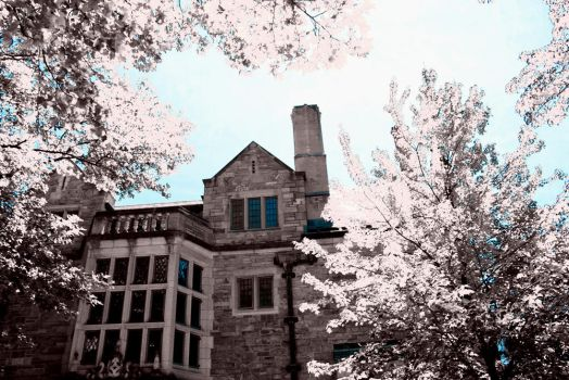 Yale in Infrared 4 by re-dream