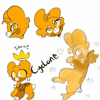 Cyclone reference sheet by sonicfangirl8221