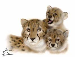Cheetah Family by theartistseyes