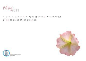 May callendar PL by Black---Angel