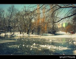 natural ice rink by Iulian-dA-gallery
