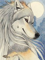 Casidhe Badge by Goldenwolf