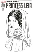 Princess Leia by Elias-Chatzoudis
