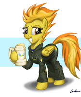Spitfire by Mattings