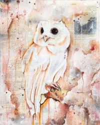 The Owls Are Not What They Seem VII by bedowynn