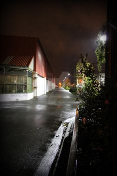Alley Way by froggypondd
