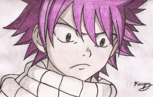 fairy tail by srk666