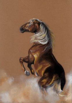 Drawing - Wild horse by Ennete