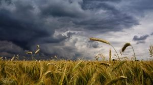 The approaching storm by kriskeleris