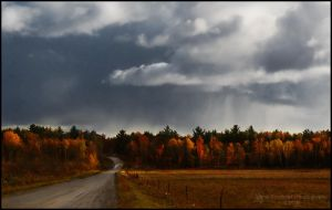Here Comes The Rain by Sarah--Lynne