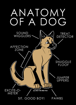 Anatomy Of A Dog by artwork-tee