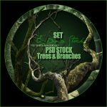PSD Stock Set - Trees and Branches by E-DinaPhotoArt