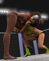 Fight! - Brooklyn v Victoria 4 by CrazyStupot