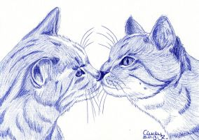Cats Kiss by Cindy-R
