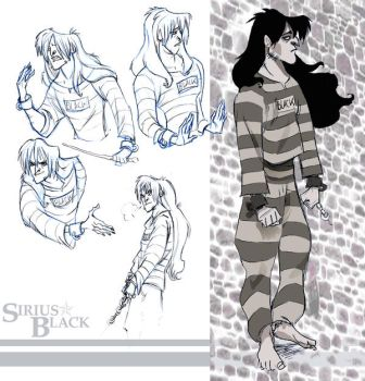 Potter-sketches 3 by Sally-Avernier