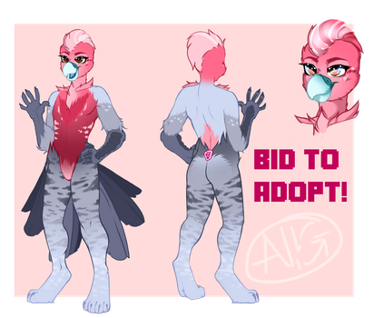 Galah - Auction adopt CLOSED by Negatable