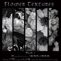 Flower Textures Pack 1 by BFstock