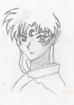 Sesshomaru face by Aergonia
