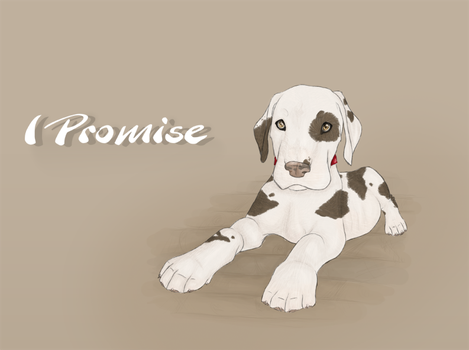 .iPromise - Book Cover. by ZekeStar