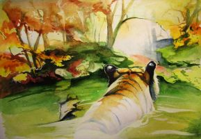 2 Right into autumn 2017 tiger by SalamanDra-S