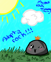 My pet rock Timmy by TailsNoniePower2